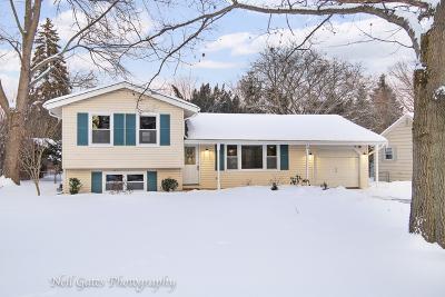 Glen Ellyn Single Family Home For Sale: 3s165 Cherrywood Lane