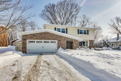 Lake Zurich Single Family Home For Sale: 147 Robertson Road