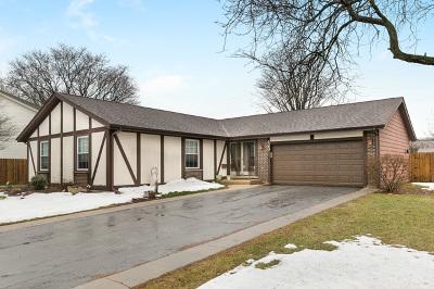 Palatine Single Family Home For Sale: 423 East Balsam Lane