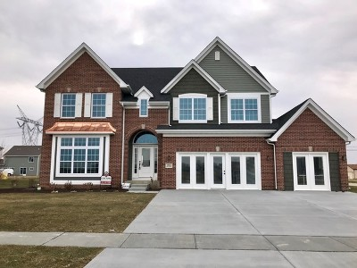 Plainfield Single Family Home For Sale: 16605 Mueller Circle