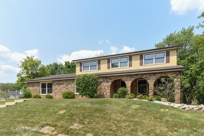 Downers Grove Single Family Home For Sale: 1212 Barneswood Drive