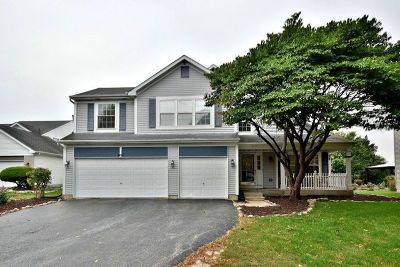 Oswego Single Family Home For Sale: 307 Francesca Court