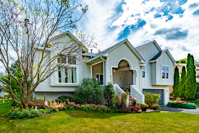 Bolingbrook Single Family Home For Sale: 339 Stone Creek Drive