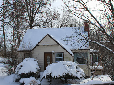 Lake Zurich Single Family Home For Sale: 21337 West Shady Lane