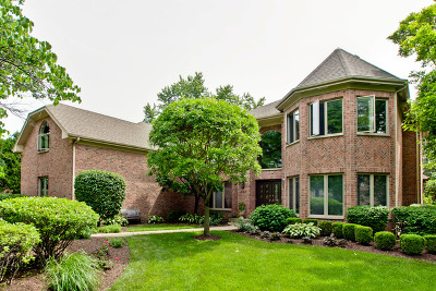 Arlington Heights Single Family Home For Sale: 907 South Beverly Lane