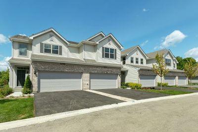 Palatine Condo/Townhouse For Sale: 1002 North Auburn Ridge Drive
