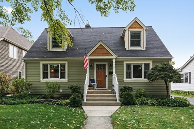 Downers Grove Single Family Home For Sale: 4517 Statton Street