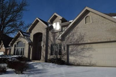 Orland Park Single Family Home For Sale: 10710 Buck Drive