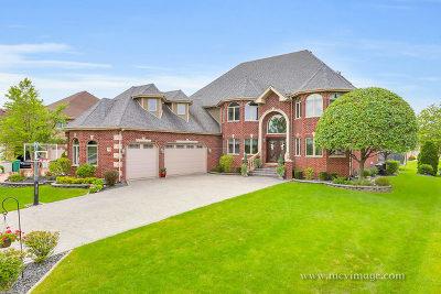 Lemont Single Family Home For Sale: 12896 Mayfair Drive