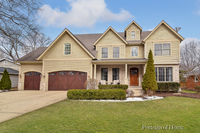 Naperville Single Family Home For Sale: 1141 Catherine Avenue