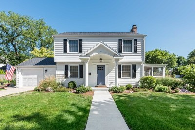 Hinsdale Single Family Home For Sale: 541 East Hickory Street