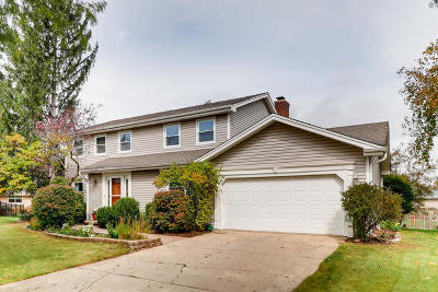 Hoffman Estates Single Family Home For Sale: 432 West Wilshire Drive