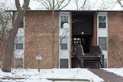Lisle Condo/Townhouse For Sale: 5514 East Lake Drive #F