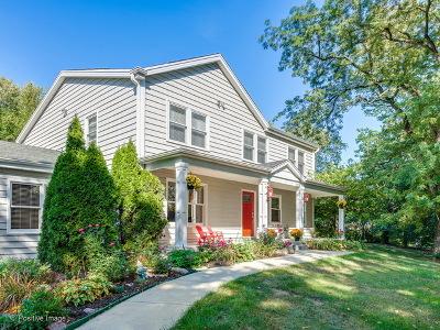 Glen Ellyn Single Family Home For Sale: 1n340 Prairie Avenue