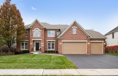 Geneva Single Family Home For Sale: 2232 Fargo Boulevard
