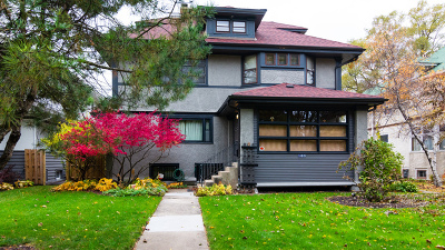 Oak Park Single Family Home For Sale: 163 North Cuyler Avenue