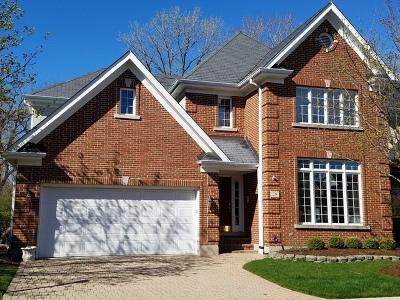 Elmhurst Single Family Home For Sale: 28 Windsor Drive