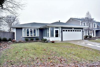 Glen Ellyn Single Family Home For Sale: 506 Wilson Avenue