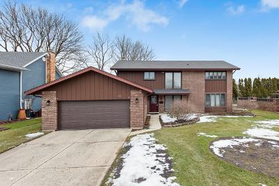 Wheaton Single Family Home For Sale: 1616 Prospect Street