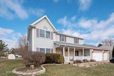 Minooka, Channahon Single Family Home For Sale: 203 Deerhaven Drive