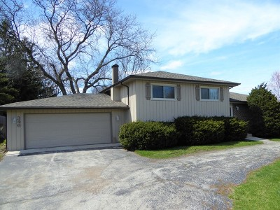 Bloomingdale Single Family Home For Sale: 346 Martin Lane