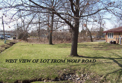 Mokena Residential Lots & Land For Sale: 19650 South Wolf Road