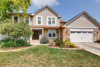 Arlington Heights Single Family Home For Sale: 2206 East Hunter Drive