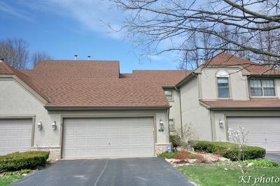 Schaumburg Condo/Townhouse For Sale: 203 Bright Ridge Drive