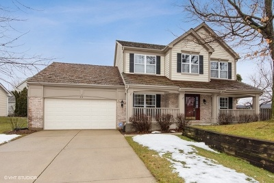 Palatine Single Family Home For Sale: 214 Avondale Drive