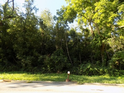 Mc Henry County Residential Lots & Land For Sale: 00000 Brink Street
