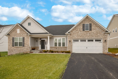 Naperville Rental For Rent: 883 Heatherfield Circle