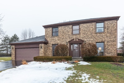 Palatine Single Family Home For Sale: 746 West Carriageway Circle