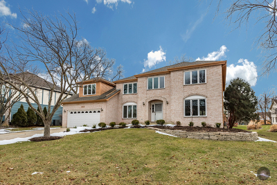 Naperville Single Family Home For Sale: 852 Turnbridge Circle