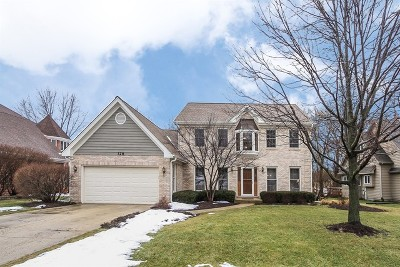 Bartlett IL Single Family Home Contingent: $399,500
