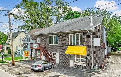 Grayslake Condo/Townhouse For Sale: 391 Center Street #391