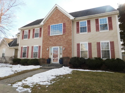 Lake Zurich Single Family Home For Sale: 30 Carolyn Court