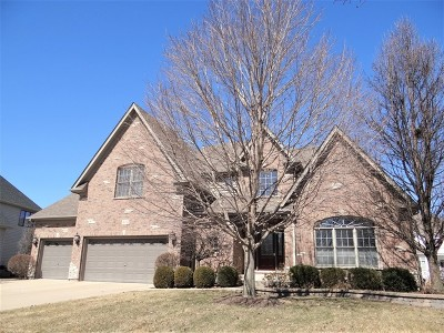 Naperville Single Family Home For Sale: 515 Eagle Brook Lane