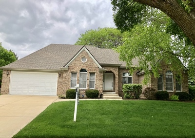 Naperville Single Family Home For Sale: 1779 Frost Lane
