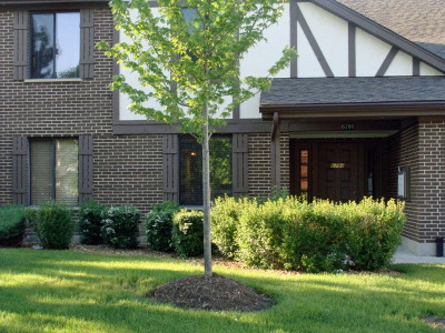 Oak Forest, Orland Hills, Orland Park, Palos Heights, Palos Hills, Palos Park, Tinley Park Rental For Rent: 6780 180th Street #5