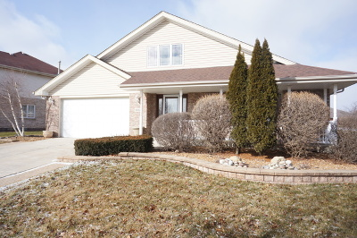 Tinley Park Single Family Home For Sale: 9002 Redcastle Drive