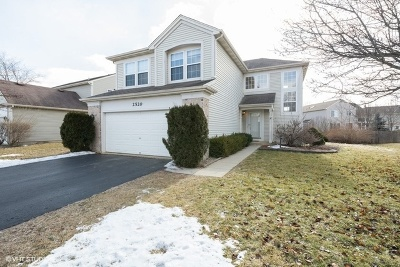 Naperville Single Family Home For Sale: 2520 Blakely Lane