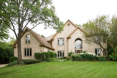 Burr Ridge Single Family Home For Sale: 126 Circle Ridge Drive