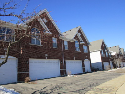 Schaumburg Condo/Townhouse For Sale: 102 Allerton Drive
