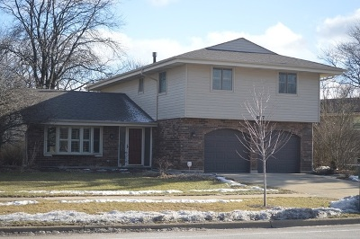 Schaumburg Single Family Home Price Change: 817 South Salem Drive
