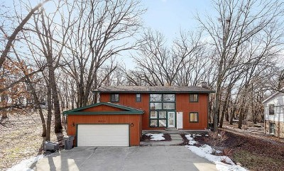 Orland Park Single Family Home For Sale: 9855 West 145th Place