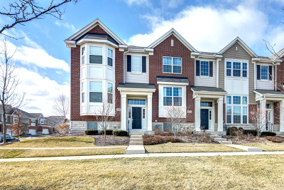 Orland Park Condo/Townhouse New: 15316 Sheffield Square Parkway