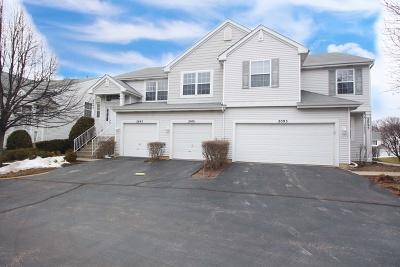 Carpentersville Condo/Townhouse For Sale: 2091 Orchard Lane