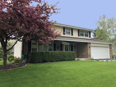 Palatine Single Family Home For Sale: 619 East Princeton Street