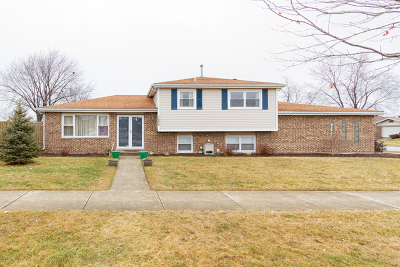 Tinley Park IL Single Family Home For Sale: $229,900