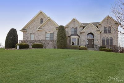 Mc Henry County Single Family Home For Sale: 5006 Cassandra Court